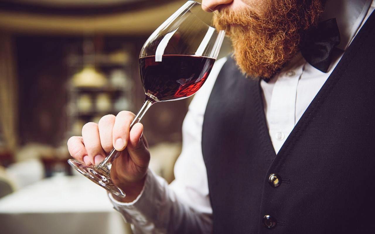 Come degustare un vino, la guida per amanti e professionisti all'uso di vista, olfatto e gusto